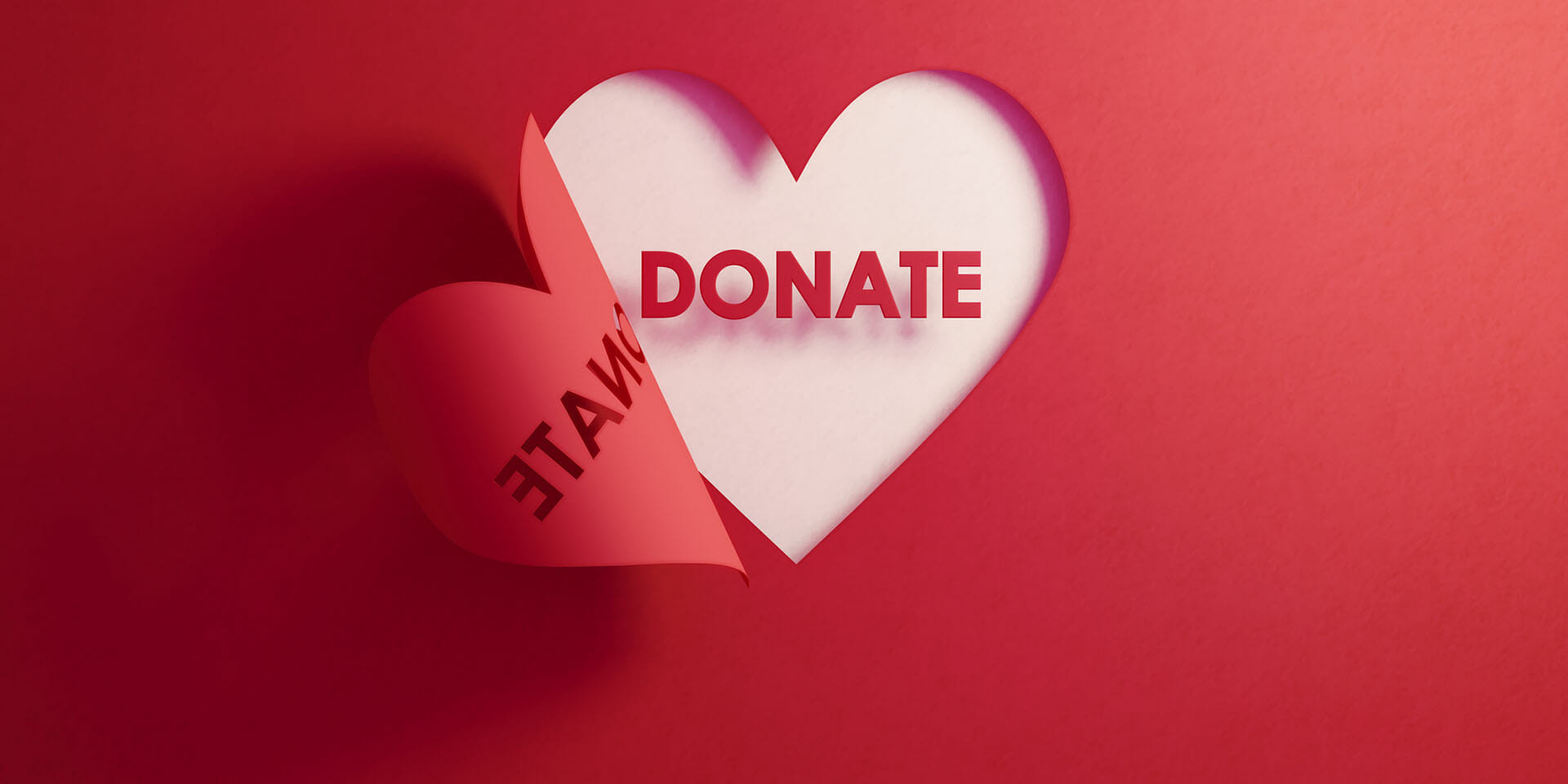Donate to FEAST image of heart